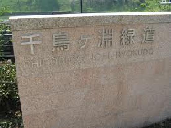 Chidorigafuchi: 千鸟渊