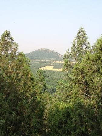 Zhao Mausoleum : 茂陵