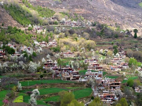 Jiaju Tibetan Village: 甲居藏寨全景