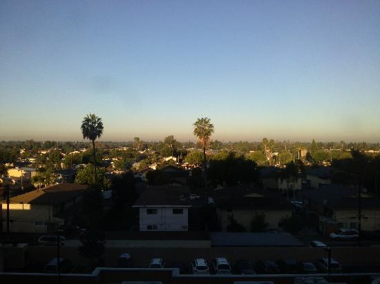 Sheraton Garden Grove - Anaheim South Hotel: 窗外的VIEW