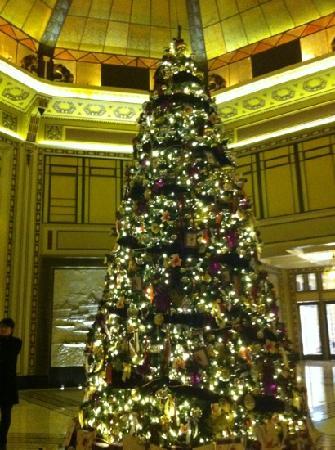Fairmont Peace Hotel: 和平饭店大堂圣诞树