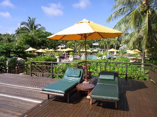 Angsana Bintan: 酒店泳池边