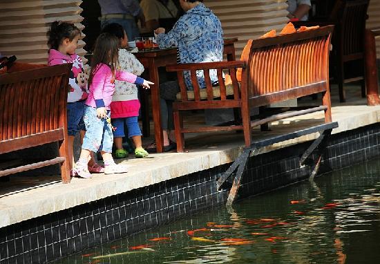 Sheraton Sanya Resort: 三亚喜来登