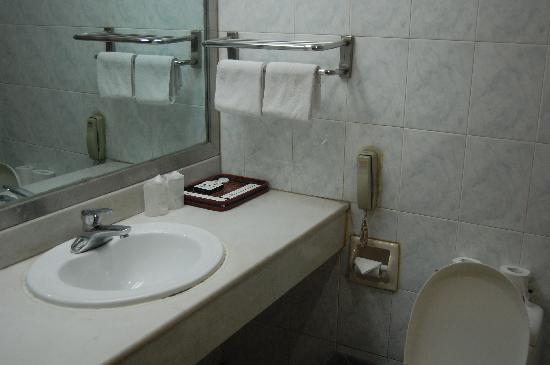 Haifenglou Hotel: 卫生间