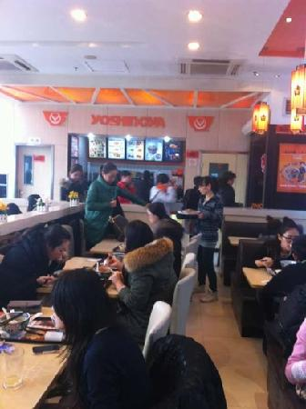 Yoshinoya (ShanXi South Road)