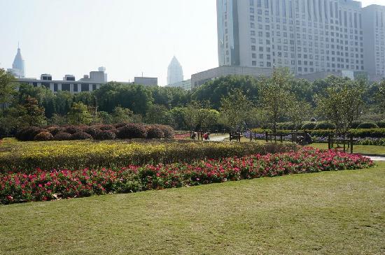 Shanghai Renmin Park: 花坛