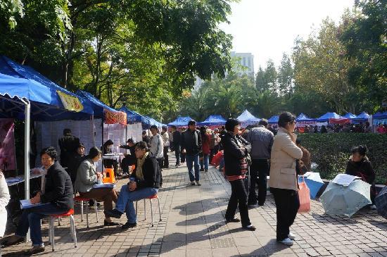 上海人民公園照片