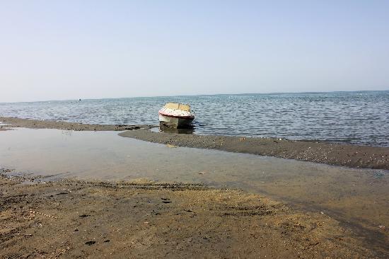 Korla, จีน: 博斯腾湖风光