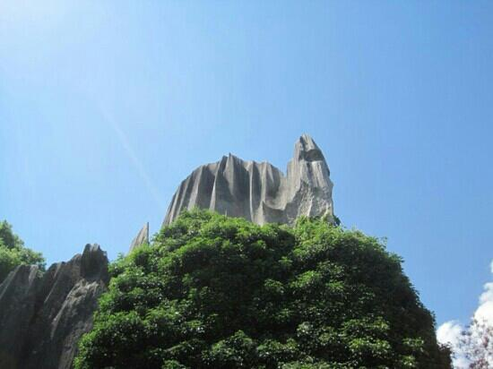 Yunnan Stone Forest Geological Park: 石林地质公园