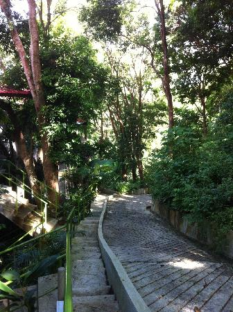 Ambong Ambong: 度假屋外面的路
