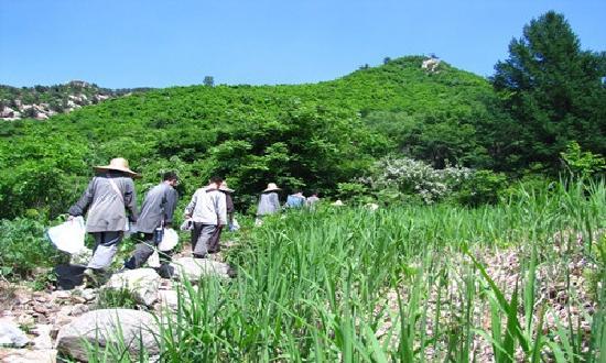 Jiulongchuan Nature Reserve: 九龙川劳作的居士