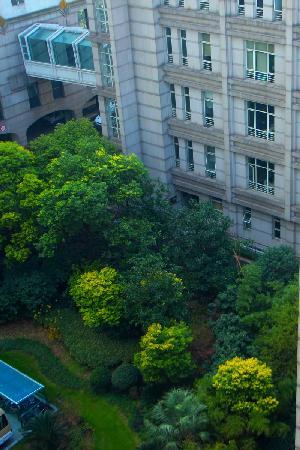 Salvo Hotel Shanghai: 外观