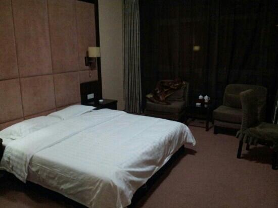 Feilong International Business Hotel: 客房