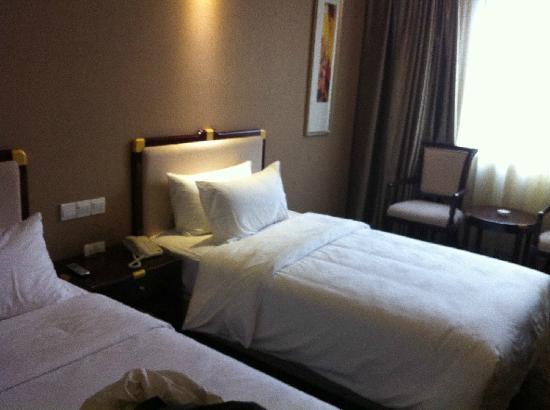 Minshan Yuanlin Hotel: 标间