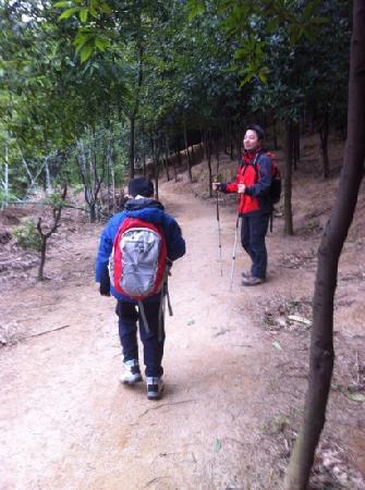 Huolu Mountain Forest Park: 下山