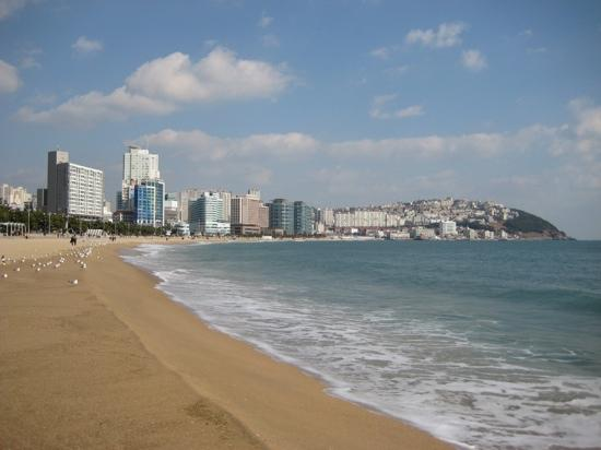 Haeundae Beach: 海云台很美