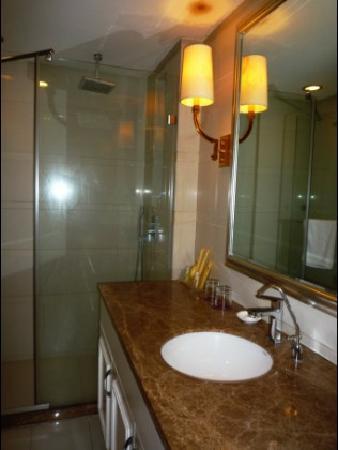 Vitoria Business Hotel: 照片描述