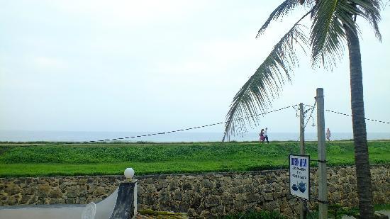Ocean View Guest House: 阳台海景