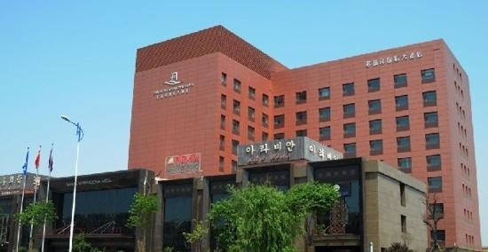Danube International Hotel: 多瑙河国际大酒店