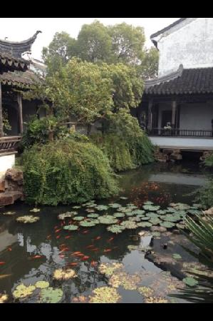 Yanjia Garden: 严家花园