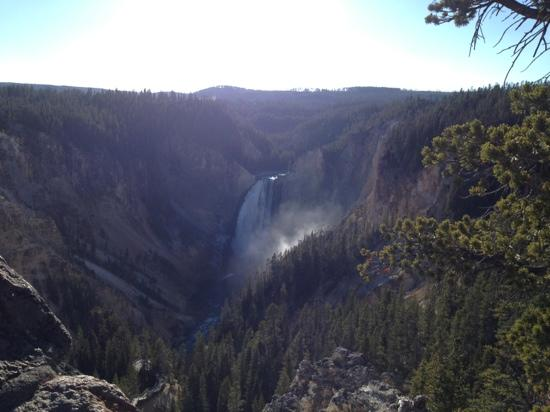 Lower Yellowstone River Falls: lower falls