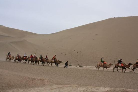 Mingsha Shan (Echo Sand Mountain) Park, Dunhuang, China: 鸣沙山的骆驼队