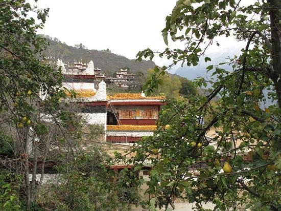 Jiaju Tibetan Village: 甲居藏寨