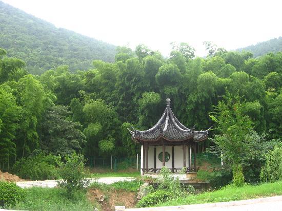 Wangshan Farm