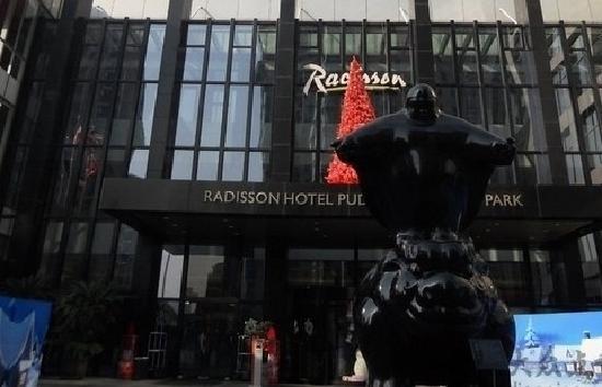 Radisson Blu Hotel Pudong Century Park: 门口