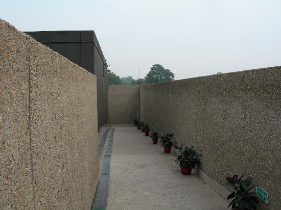 Yin Dynasty Ruins : 殷墟博物馆