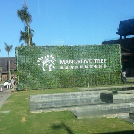 Sanya Bay Mangrove Tree Resort: 红树林