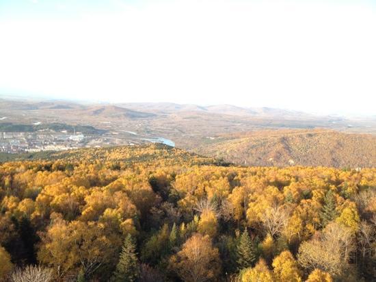 Yichun Nanshan Forest Park: 南山塔顶