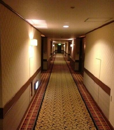 Okura Garden Hotel Shanghai:                   过道