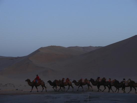 Mingsha Shan (Echo Sand Mountain) Park, Dunhuang, China: 驼队