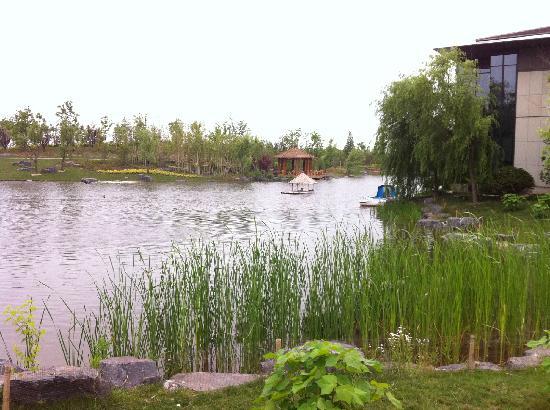 Chongming Dongping Resort
