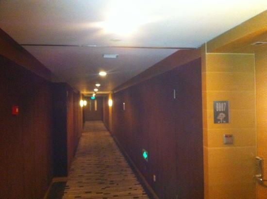 Changbaishan International Hotel:                   走廊