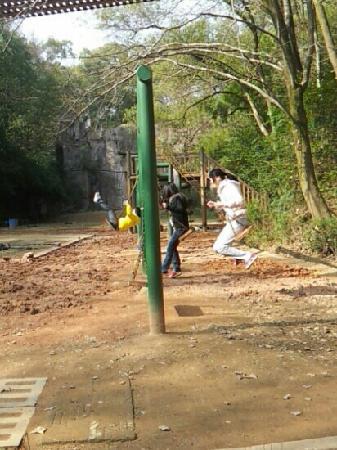Changsha Nanjiao Park : 南郊公园的童趣