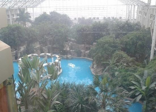 Longxi Hotspring Resort: 温泉内景