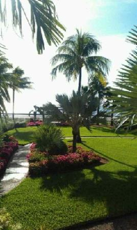 Hyatt Key West Resort and Spa: 酒店花园