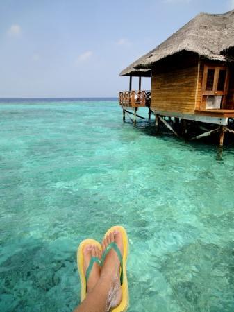 Fihalhohi Island Resort: 菲哈后岛旅游度假村