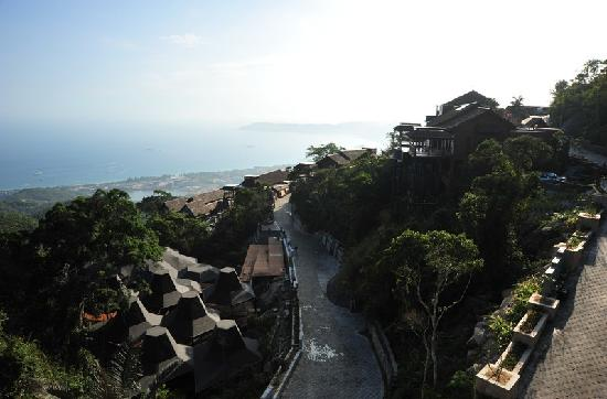 Earthly Paradise Bird Nest Resort: 云顶