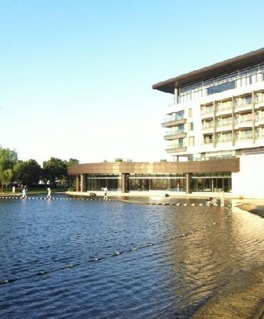 The Yuluxe Sheshan, a Tribute Portfolio Hotel, Shanghai:                   游泳池