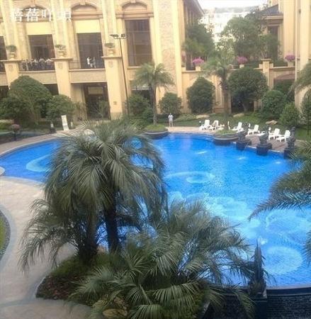 Chateau Star River Pudong Shanghai:                   游泳池