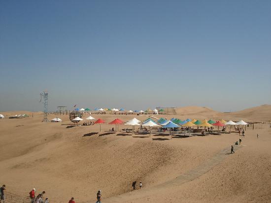 Whistling Dune Bay Tourist Scienc Spot: 远景