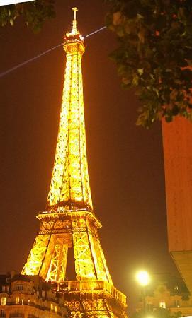 Mercure Paris Tour Eiffel Grenelle Hotel:                   从酒店花池看铁塔美好