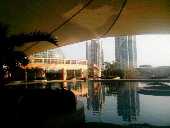 โรงแรม เดอะ เวนิส เซินเจิ้น: 室外游泳池