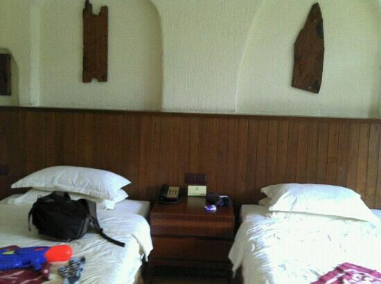 Shampoola Forest Hotel : 房间