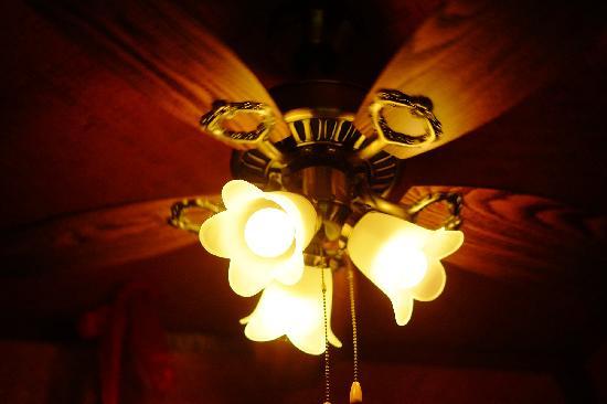 Chiang Mai Summer Resort: 吊扇灯
