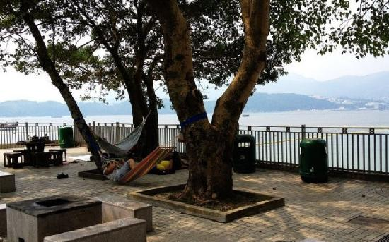 Sai kung East Country Park : 西贡郊野公园休闲的人们