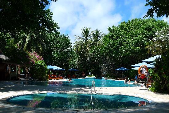 เชอราตัน มัลดีฟส์ ฟูลมูน รีสอร์ท&สปา:                   泳池畔